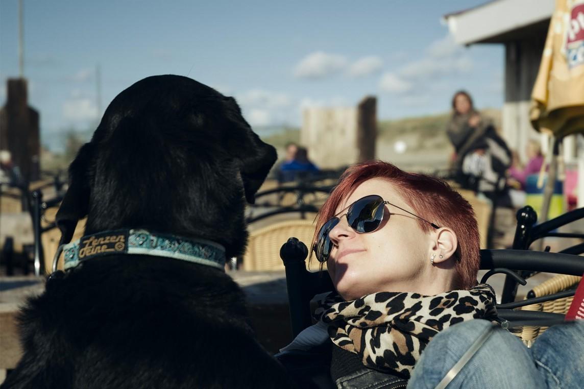 Ankündigung: Hundetraining in Zandvoort am 04.10.2014
