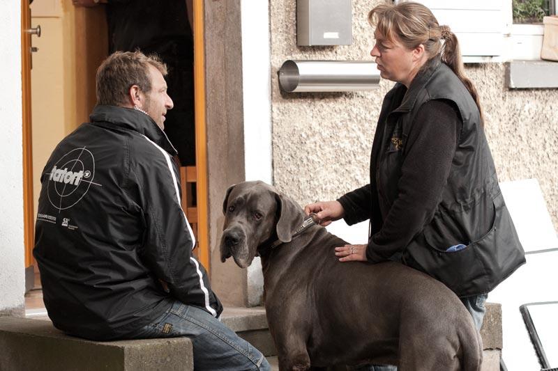Tatort Münster Krumme Hunde