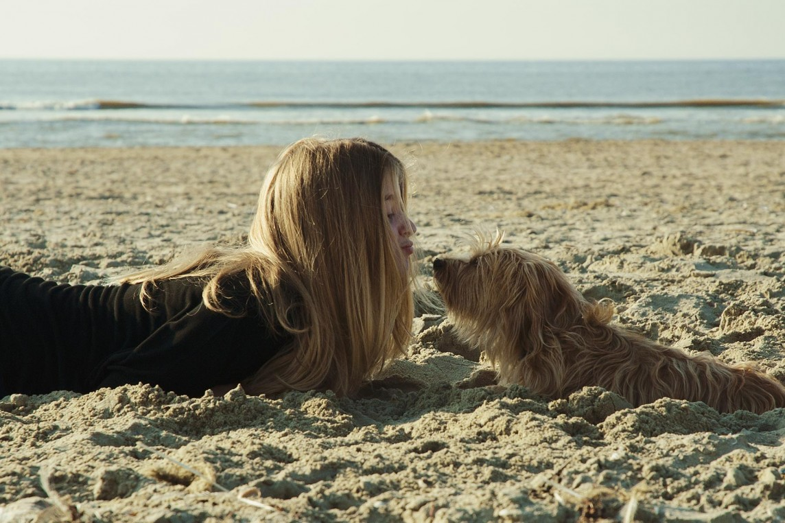 Animalstar in Zandvoort 2015